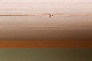 天井裏の雨漏り初期症状イメージ