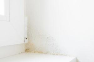 壁の雨漏り初期症状イメージ